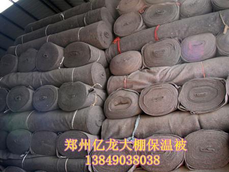 南阳新型钢结构蔬菜大棚骨架 郑州提供大棚保温棉被 高清图片