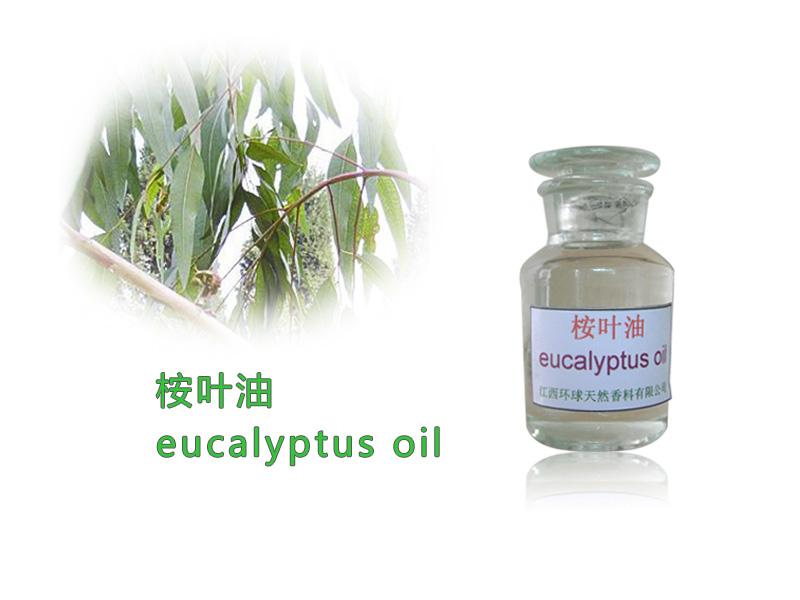 100%纯天然优质桉叶油CAS8000-48-4