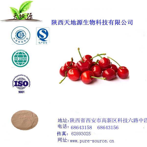 天然樱桃果粉