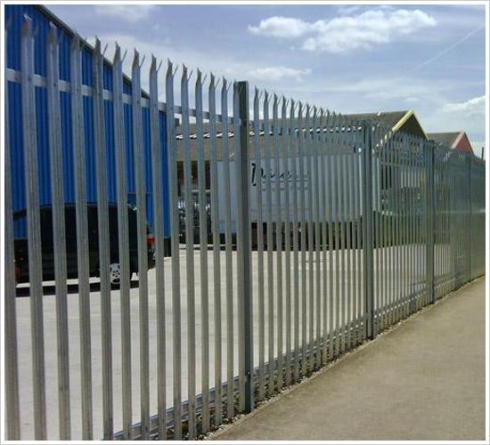 金属护栏网、护栏网信息、护栏网加工