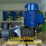Seko AKS803 投药泵 投加泵 计量泵  柱塞泵