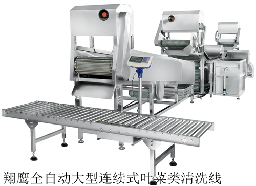 蔬菜清洗生产线 蔬菜清洗流水线 蔬菜清洗加工生产线