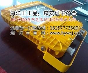 海洋王LED防爆灯_BFC8160免维护(LED)防爆泛光灯_防