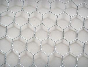 六角网,pvc六角网,镀锌六角网,重型六角网