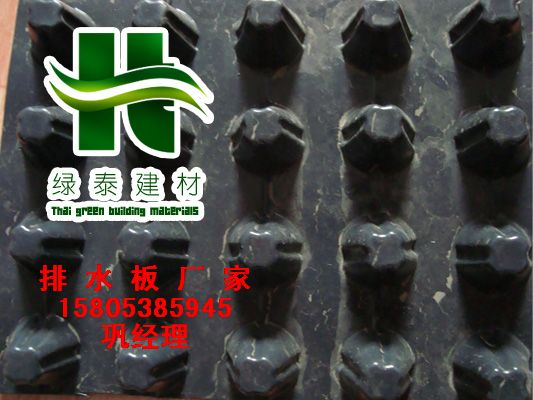 供应秦皇岛(蓄排水板)园林绿化&排水板