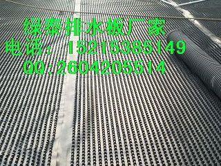 大同塑料排水板【地下室排水板】防渗专用&诚信厂家@
