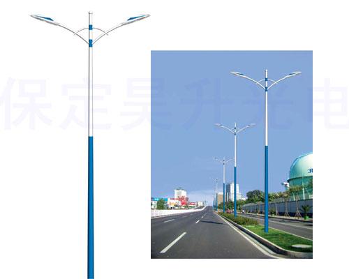 市电LED路灯,快车道/支路/公园/小区