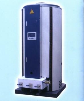 立式燃气锅炉 燃气采暖锅炉 常压燃气锅炉