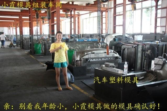台州黄岩塑料模具 20升油漆桶模具