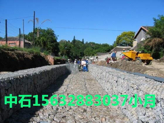固堤护坡生态防护网/专业品牌PVC绿格网