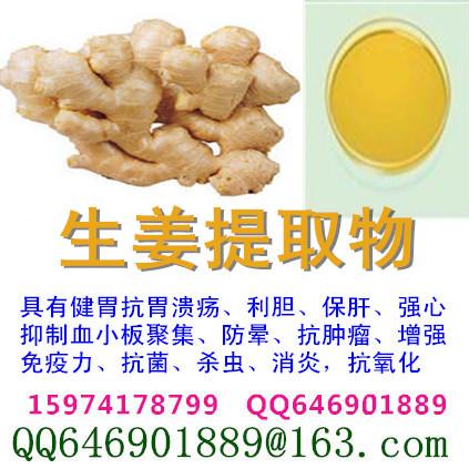 生姜提取物 5%-10%姜辣素