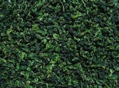 安溪铁观音王茶叶 花香型耐泡新丛满口香 高山茶叶直销