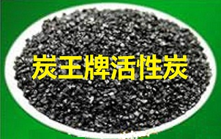林大牌室内空气净化专用竹质颗粒活性炭