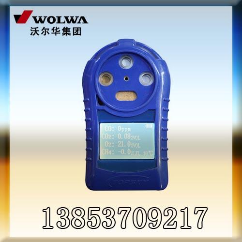 精确测量专家:CD4多参数气体测定器