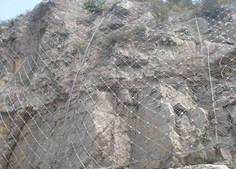 衡水奇佳sns边坡拦石防护网