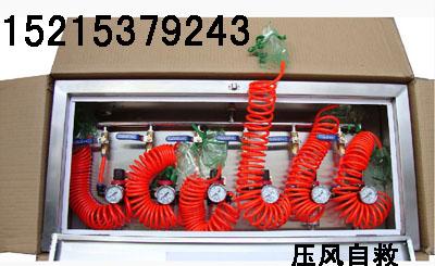 MZS30自动苏生器 矿用自动苏生器 苏生器价格