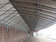 荆州冬暖式大棚材料岳阳建温室大棚多少钱