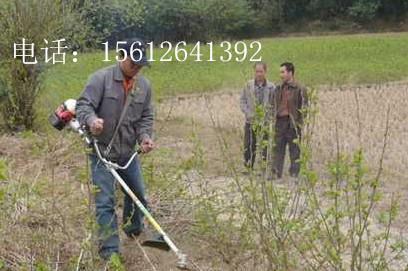 本田原装进口割草机配件打草机进口草坪机进口