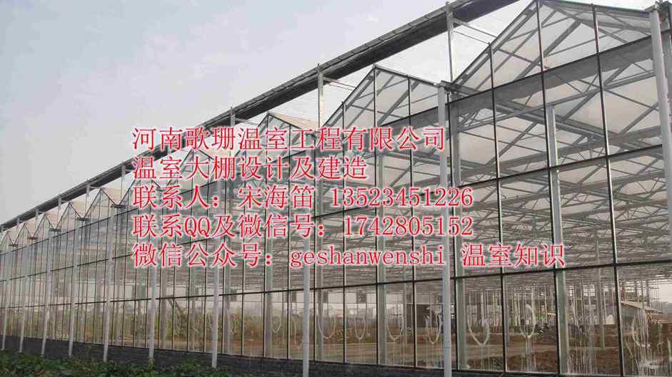 温室大棚应对大风措施/温室大棚覆盖材料维护/温室大棚防风知识歌珊