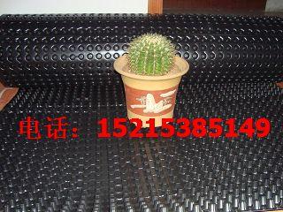供应沧州塑料排水板|蓄排水板】植草格|土工膜】土工布