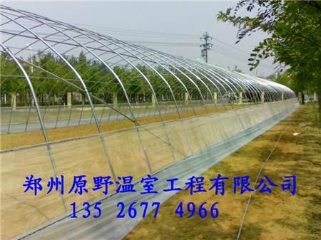 河南省最好的日光温室建设 郑州找原野