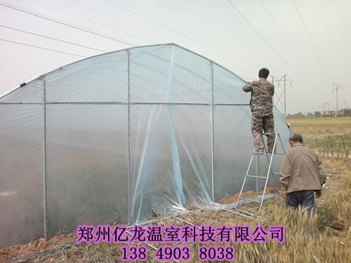平顶山养殖大棚建设 新乡温室建造大棚建设价格