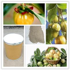 现货供应/优质减肥原料/60%75%HCA羟基柠檬酸/藤黄果提取