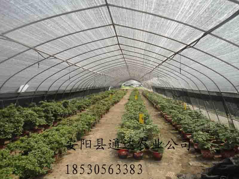 大型种植、养殖生态园,通达公司全程为您规划建造