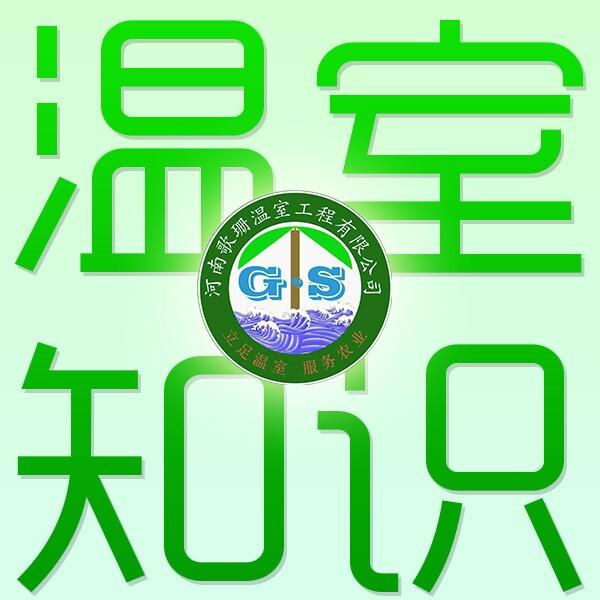 河南/郑州/新乡/安阳温室大棚建造设计安装-歌珊温室骨架厂