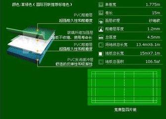 羽毛球运动地板/塑胶羽毛球地板