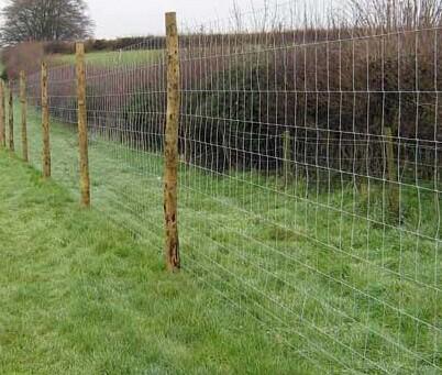 利木赞养殖专用牛栏钢丝网