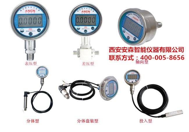 ACD-2F峰值压力表