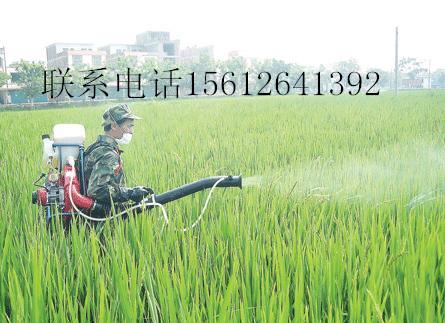园林喷雾器打药机汽油动力喷雾机