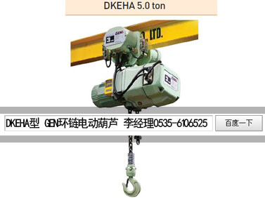 韩国黑熊电动葫芦,进口黑熊电动葫芦报价,龙海独家代理