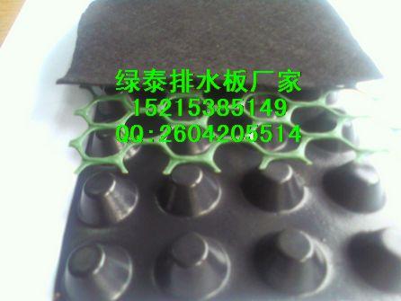 忻州%地下室排水板|园林绿化排水板|规格齐全