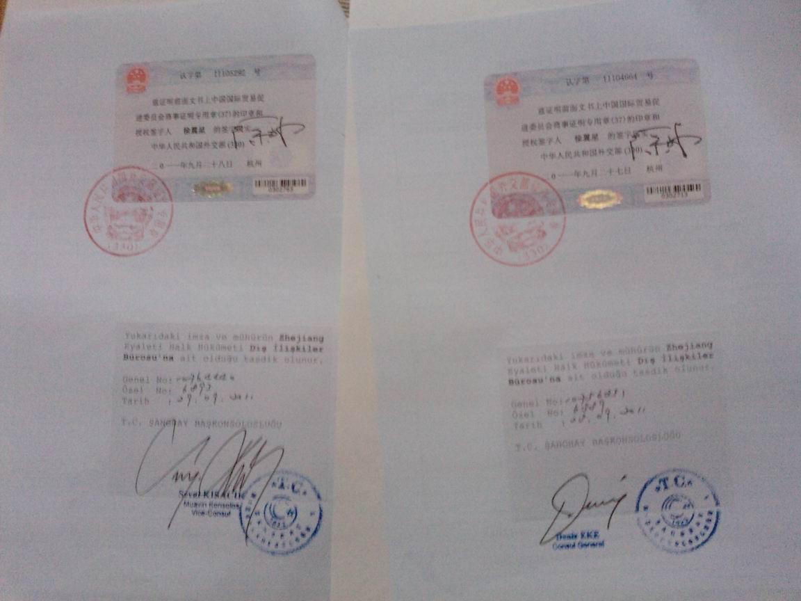 专业代理土耳其大使馆加签;土耳其使馆加签,土耳其使馆签证