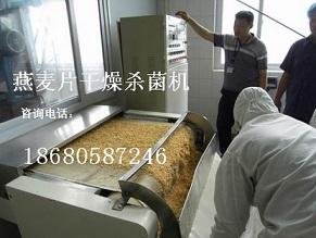 广州饲料微波干燥膨化机设备