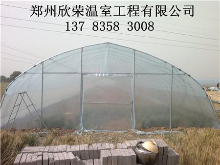 新乡简易蔬菜大棚安装 焦作食用菌大棚建造