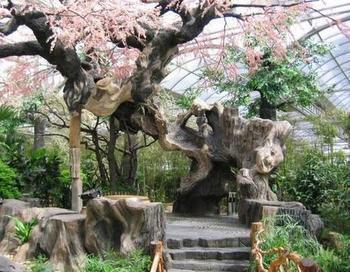 北京园林景观水泥假山假树定做仿真假树制作厂家