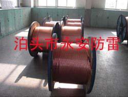 铜包钢接地绞线永安(泊头)防雷器材公司