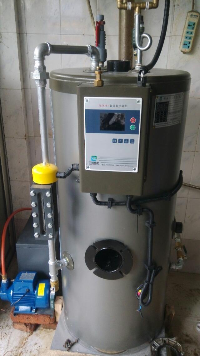 安庆豆腐专用蒸汽锅炉