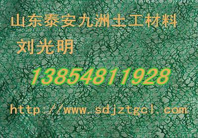 武汉三维固土网垫,湖北三维固土网垫厂家热线