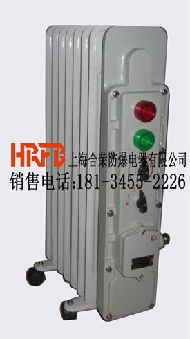 冰城哈尔滨首选防爆电暖器