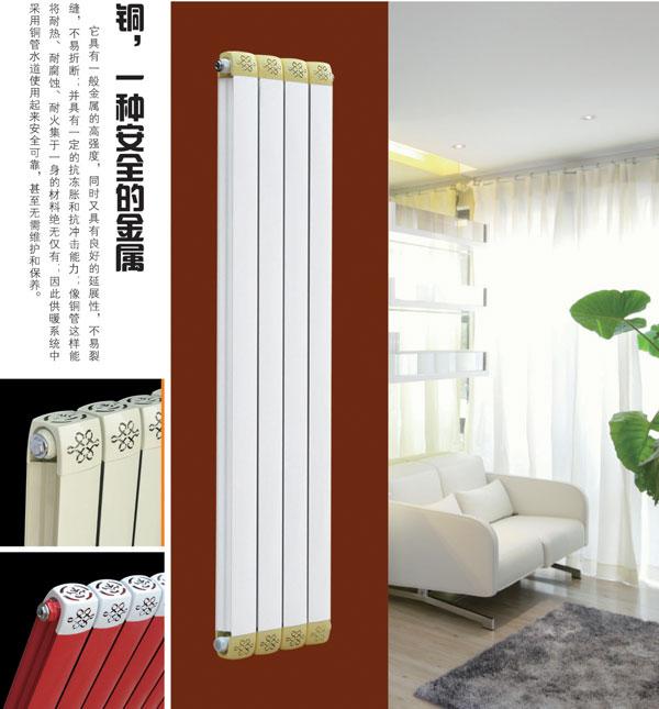 天津散热器品牌  高端大气