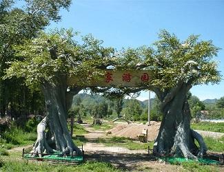 园林景观设计厂家|保定旭泉园林绿化公司