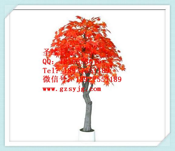 仿真枫树红枫意境树 优质美观时尚高档观赏树