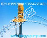 50FY-32液面1.8米隔爆液下泵