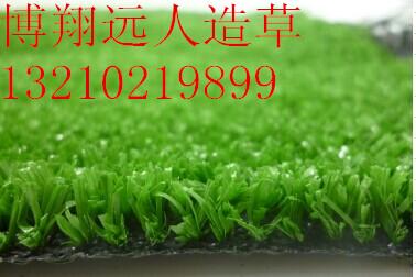 供应天津优质篮球场人造草坪|仿真草坪施工|价格