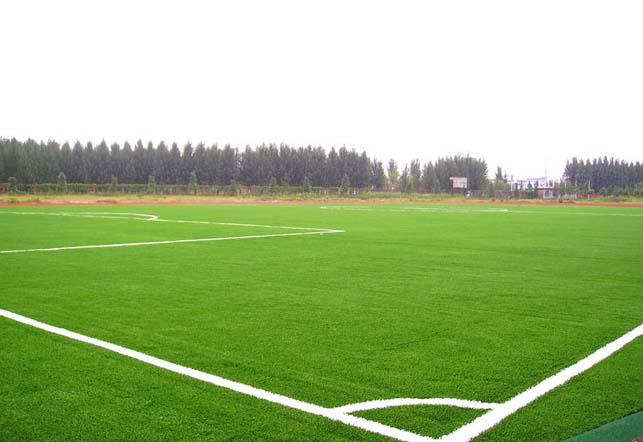 供应陕西足球场运动草坪休闲人造草坪