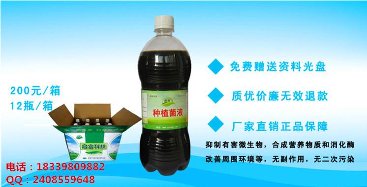 启富种植EM菌液怎么用在葡萄种植上用?厂家多少?怎么购买?